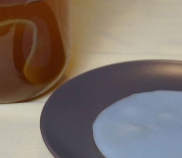 Kombucza (Grzybek herbaciany)